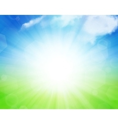 Sunny summer background vector