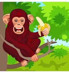 happy monkey chimp vector image