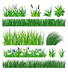 Grass with earth vector