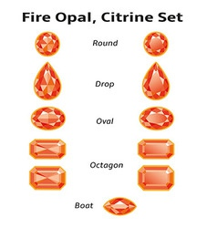 Fire Opal Citrine Set With Text vector image vector image