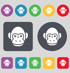 Monkey icon sign a set of 12 colored buttons flat vector