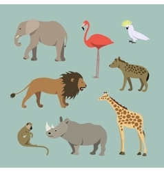 Set Of Different African Animals Animals vector image
