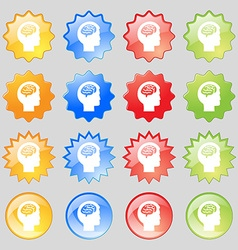 Brain icon sign Big set of 16 colorful modern vector image