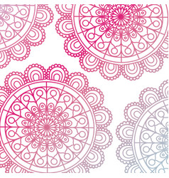 Pattern red gradient brilliant flower mandala vector
