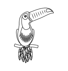 toucan tropical bird icon vector image vector image