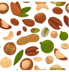 Delicious nutritious nuts full of vitamins and vector