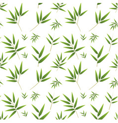Seamless bamboo pattern on white vector