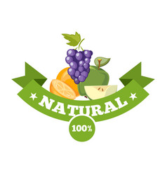 Natural fresh food fruits logo badge vector