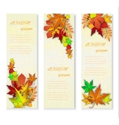 Set of three banners with colorful autumn vector image