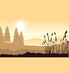 silhouette of mountain with grass landscape vector image