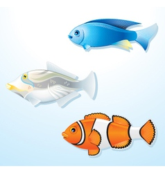 Detailed tropical fishes vector