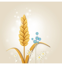Ear of wheat and flowers vector