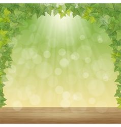leaves and sun rays vector image