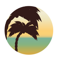 Beach with tree palm vector