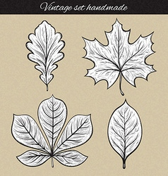 Retro set of 4 leaf sketch handmade vintage leaves vector