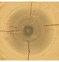 Wood cross section background vector