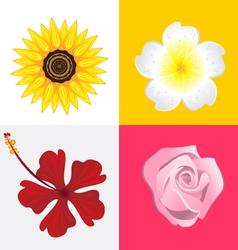 Blossom flower vector