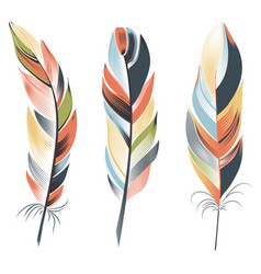 Bright big feathers on a white background boho vector