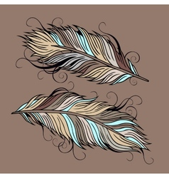 Vintage ethnic feathers vector