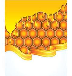 Bright honey background - vector