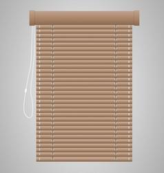 Brown Jalousie vector image