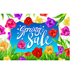 Spring sale banner colotful tulips flowers blue vector