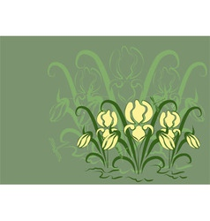 Green background with irises vector image