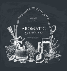 Aromatic and medicinal plant design vector