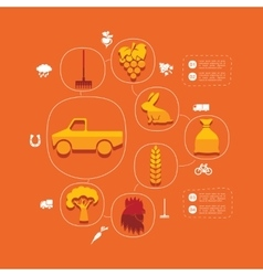 Agriculture flat infographic vector