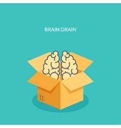 Flat carton box brains vector
