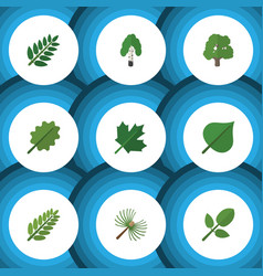 Flat icon nature set of timber leaves alder and vector