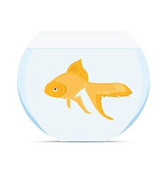 Goldfish in bowl vector image vector image