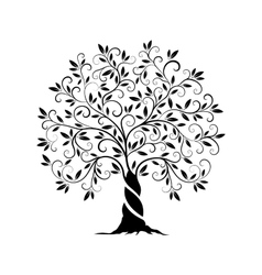 Olive tree outline curl silhouette vector image
