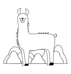 Peruvian llama in jungle vector