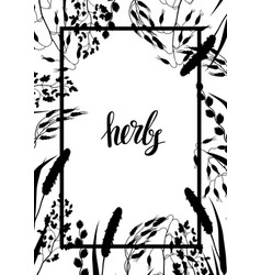 frame with herbs and cereal grass silhouettes vector image