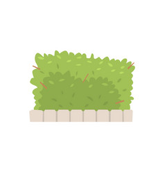 Green shrub fence urban infrastructure element vector
