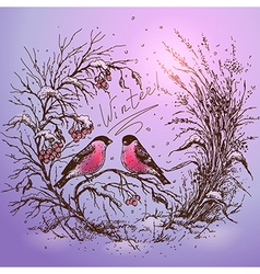 winter color vector image