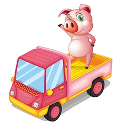 A pig in the truck vector image