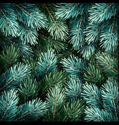 christmas fir branches vector image vector image