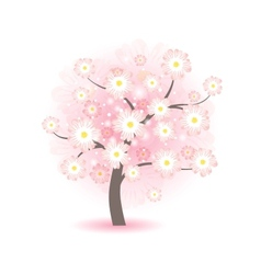 blossom tree with pink flowers vector image