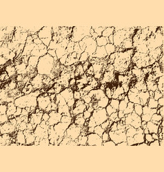 Texture of yellow withered earth with cracks vector