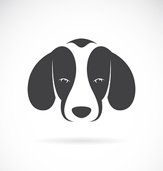 Dog beagle vector