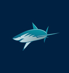 shark attack logo sign on dark background vector image