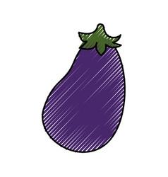 Eggplant fresh vegetable vector