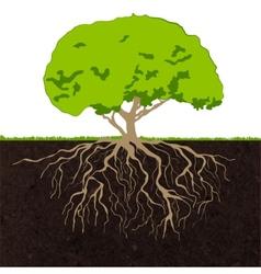 Tree roots sketch vector