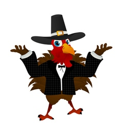 pilgrim turkey cartoon vector image