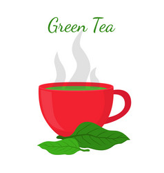 green tea - asian drink red cup leaves of matcha vector image vector image