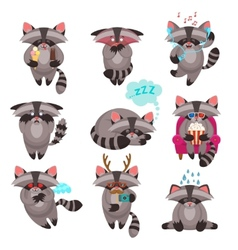 Racoon emotions stickers set vector