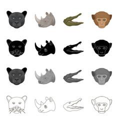 wild animal panther rhinoceros crocodile monkey vector image vector image