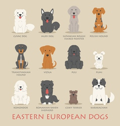 Set of eastern european dogs vector
